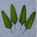Набор бумажных листьев папоротника, цвет - зеленый, 10 шт
