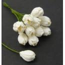 Тюльпан, белый, 5 шт