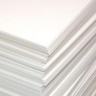 Пивной картон, 20 х 20 см, толщина 1,25 мм, цвет белый