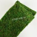 Лента из натурального мха, зелёная, 12х20 см
