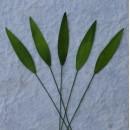 Набор бумажных листьев лемон-грасса, цвет светло-зеленый, 10 шт